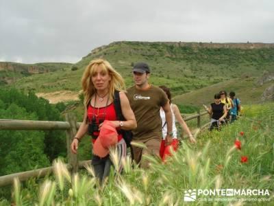 Hoces del Río Duratón - rutas senderismo - Sepúlveda; como hacer amigos nuevos; tiempo en la pedr